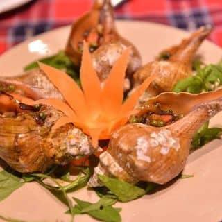 Hải sản tươi sống của huyenvuong84 tại 59 Nguyễn Hữu Cảnh, Phường 22, Quận Bình Thạnh, Hồ Chí Minh - 5447796