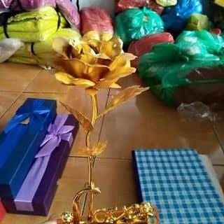 HoA 20/10 của trangtran301 tại Quảng Trị - 1174625