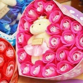 Hoa hồng đất dẻo nhật bản của langlang20 tại Xuân Hoà, Thị Xã Phúc Yên, Vĩnh Phúc - 1156381
