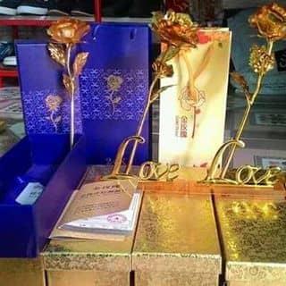 Hoa hồng dát vàng của penhiba tại Kiên Giang - 1165651