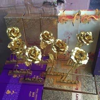 Hoa hồng đế love của hotandat199 tại Sóc Trăng - 1230569