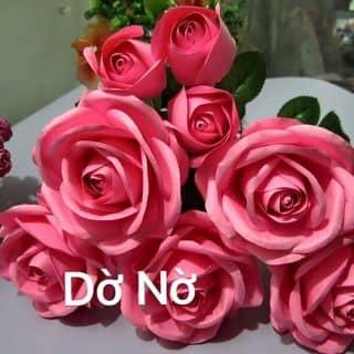 Hoa hồng giấy của dono2 tại Đội Cấn, Trưng Vương, Thành Phố Thái Nguyên, Thái Nguyên - 1504403