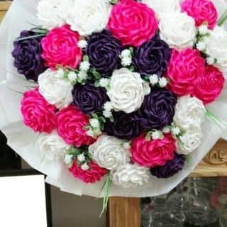 Hoa hồng giấy của ngocnguyen1404 tại Hà Khẩu, Thành Phố Lào Cai, Lào Cai - 1157535