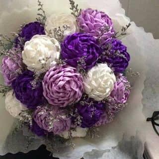 Hoa hồng giấy nhún. của thi156 tại Hậu Giang - 2673510