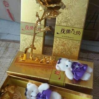 Hoa hồng mạ vàng của phanphuocduy tại Đà Nẵng - 1175316