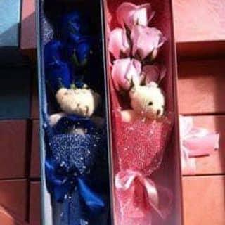 hoa hồng sáp của quyetquat tại Bắc Giang - 1133601
