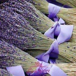 Hoa lavender khô Mùi thơm ngây ngất luôn còn 2 bó 200 cành giá 250k của tathang4 tại Bắc Ninh - 1446346