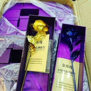 Hoa mạ vàng của oanh45 tại Hà Tĩnh - 1066883