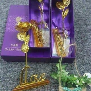 Hoa mạ vàng cho ngày 20-10 của venuslx tại An Giang - 1305039