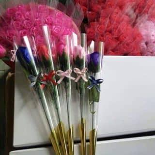 Hoa sap thơm của hoaishamssbabyss tại Thái Bình - 1027103