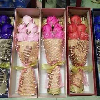 Hồng sáp 5bông của vitconthuythuy tại Hà Tĩnh - 1274478