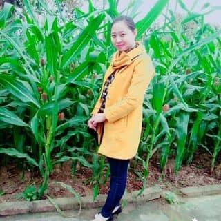 I của huyen905 tại 110 Hàm Nghi, Thành Phố Hà Tĩnh, Hà Tĩnh - 1507096