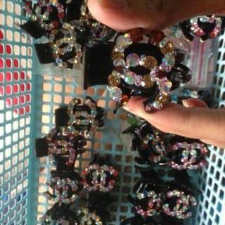 Kẹp tóc 40k của tamky1507 tại Chợ Đêm Đà Lạt, Thành Phố Đà Lạt, Lâm Đồng - 1403307