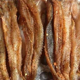 Khô Cá Lóc Miền Tầy. của huyentrang429 tại Trà Vinh - 2925674