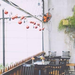 http://tea-3.lozi.vn/v1/images/resized/khong-gian-LeC8GyfBCrCAUprk-106029-1460445669