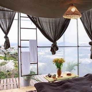 Không gian của thaole89 tại 2/35 Nam Hồ, Thành Phố Đà Lạt, Lâm Đồng - 2854777
