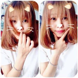 Meo mèo miu mìu  của nhunban tại Bắc Ninh - 1450339