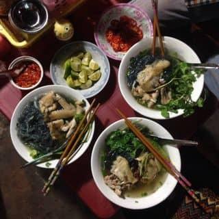 http://tea-3.lozi.vn/v1/images/resized/mien-ga-313543-1466869797