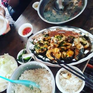 Món ăn kinh hoàng 😭 của linhattr tại Sen Thủy, Huyện Lệ Thủy, Quảng Bình - 251591