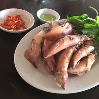 Mực trứng hấp của hoangkim13 tại Mũi Né, Thành Phố Phan Thiết, Bình Thuận - 635919