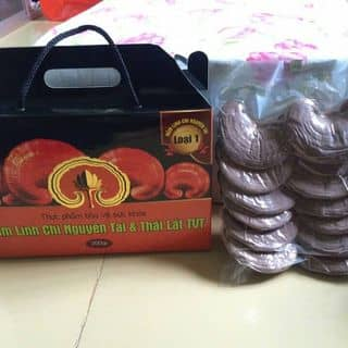 NẤM LINH CHI 🍄 của nguyendao85 tại Tiền Giang - 1432662