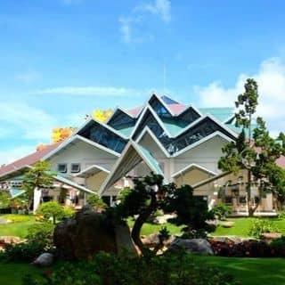 Nhà Mái của tatriet972 tại 45 Đặng Thái Thân, Phường 3, Thành Phố Đà Lạt, Lâm Đồng - 3454323
