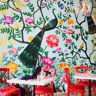 Nu bistro của trangha98 tại Lầu 2, 25 Hồ Tùng Mậu, Q.1, Quận 1, Hồ Chí Minh - 4189543