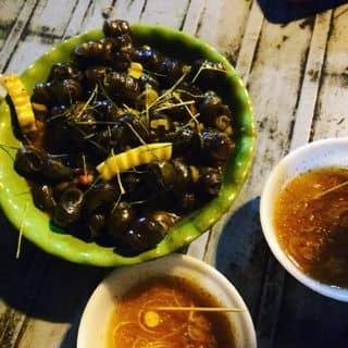 Ốc cô mai của ryeowookcute1234 tại SVĐ tỉnh Sơn La, Trần Đăng Ninh, Quyết Thắng, Thành Phố Sơn La, Sơn La - 641648