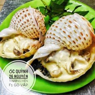 Ốc heo nướng muối ớt của phuongquynh.phammai tại 26 Nguyễn Thượng Hiền, phường 1, Quận Gò Vấp, Hồ Chí Minh - 3010183