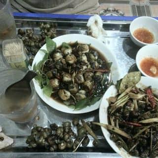 Ốc xào dừa - Cút lộn xào me của leebi2 tại Lào Cai - 881455
