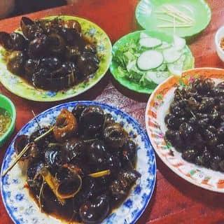 #ốcminhnghĩa của dancaluvhs tại 253 Phan Bội Châu, Thành Phố Huế, Thừa Thiên Huế - 1127466