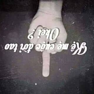 Ok của dangtamhetnuoc tại Thái Bình - 788583