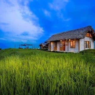 Phòng của lemai9911 tại Thanh Kim Commune, Huyện Sa Pa, Lào Cai - 3934123