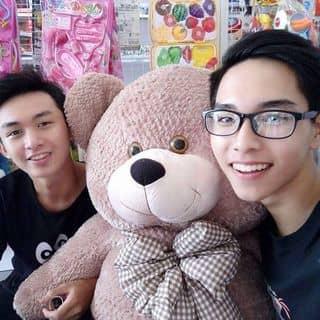 Pingsu gấu teddy  của anhchangdeptrailatoi tại Phú Yên - 922735