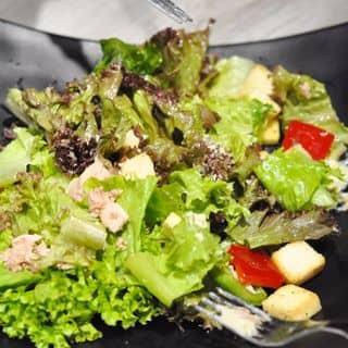 http://tea-3.lozi.vn/v1/images/resized/salad-ca-ngu-280371-1465200504