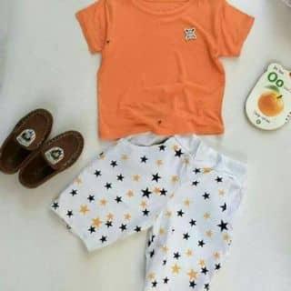 Sét bộ áo thun quần kaki cho bé 50k của hanhoa5 tại Lâm Đồng - 3835215