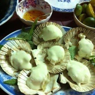 http://tea-3.lozi.vn/v1/images/resized/so-diep-nuong-pho-mai-1426-1388202475