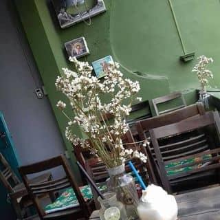 Soda Chanh Đào... cái kia quên rồi của lunlun99 tại 6 Phan Bội Châu, Thành Phố Thanh Hóa, Thanh Hóa - 2539216