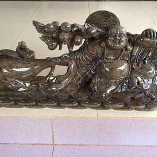 Thủy tùng của conghole tại Lâm Đồng - 1112162