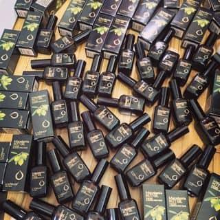 Tinh dầu dưỡng tóc Macamadia của meomeo777 tại Sơn La - 2112810