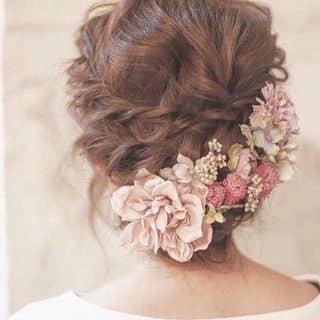 Tóc hoa của minxynh tại Tuyên Quang - 1073498
