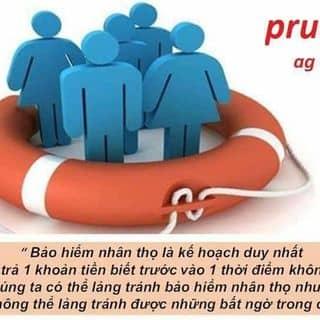 Tôi là vệ sĩ bảo vệ tài chính của gia đình bạn của roanyang tại Quảng Ninh - 3238249