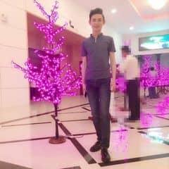 Trần Cường Sơn trên LOZI.vn