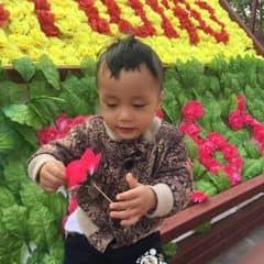 Hue Phan trên LOZI.vn