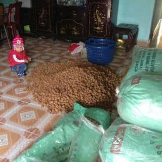 Vải sấy của thaonhiquanao tại Quảng Ninh - 2402379
