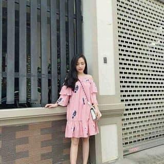 Váy của banhbao223 tại 43 Lê Lợi, Huyện An Lão, Hải Phòng - 3459201