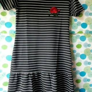 Váy của sileaoquan1 tại Quảng Trị - 3706458