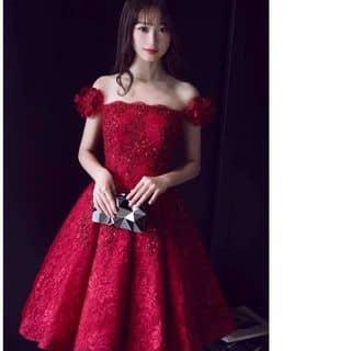 Váy ren xếp li của hangnhan93 tại 110 Hàm Nghi, Thành Phố Hà Tĩnh, Hà Tĩnh - 1220893