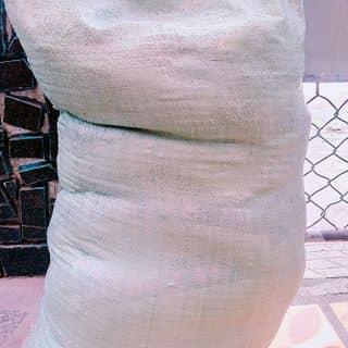 Vừa nhận xong của nguyenquynhanh24 tại Đà Nẵng - 1474452