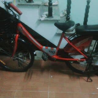 Xe đạp  của hantudi2 tại Đà Nẵng - 3263670